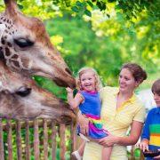 باغ وحش آنتالیا ترکیه